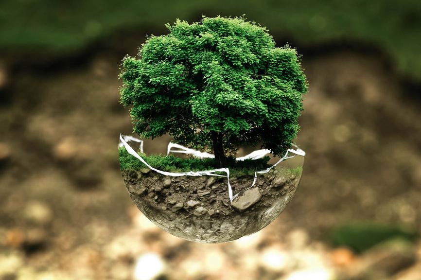 Environnement - Agility